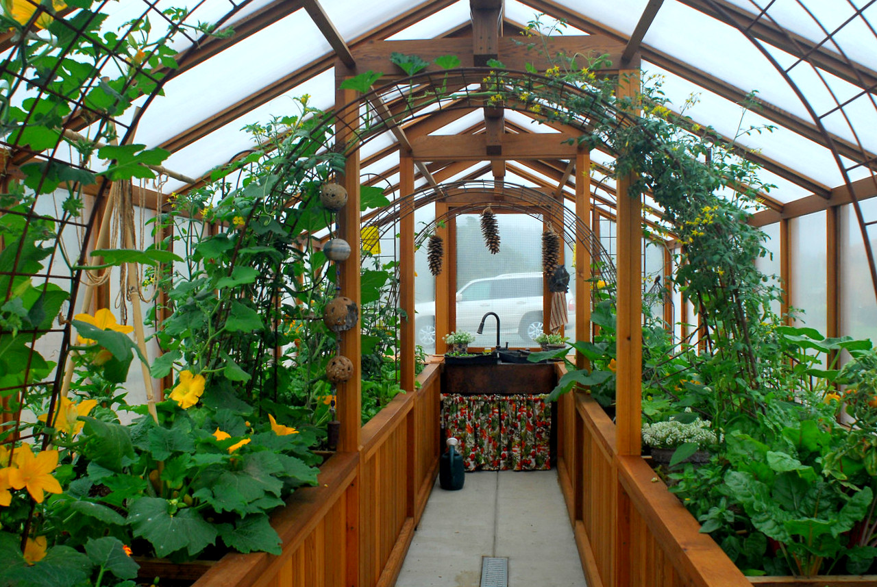 Where can you find backyard greenhouse plans?